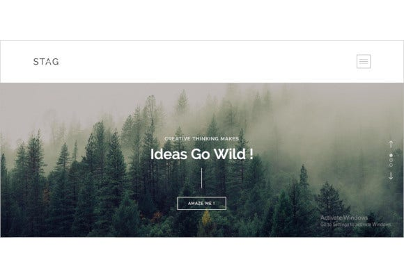 stag portfolio theme for freelancers and agencies