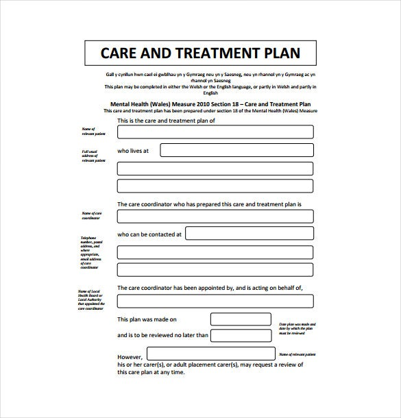 care and treatment plan pdf format free download