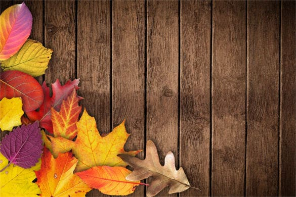 wood background for autumn banner poster for free