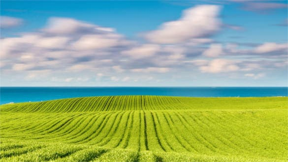 baltic sea field hd background free download