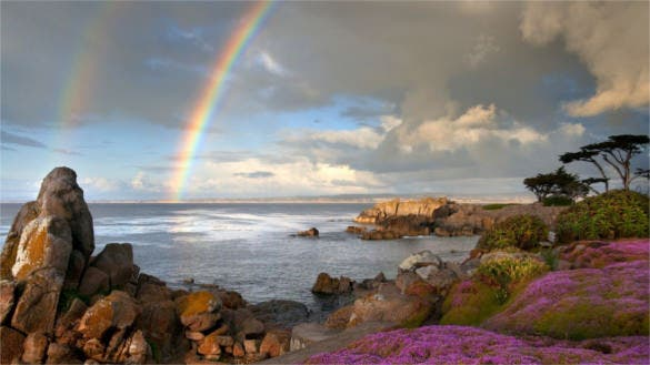 rainbow sea coast stones flowers background download for free