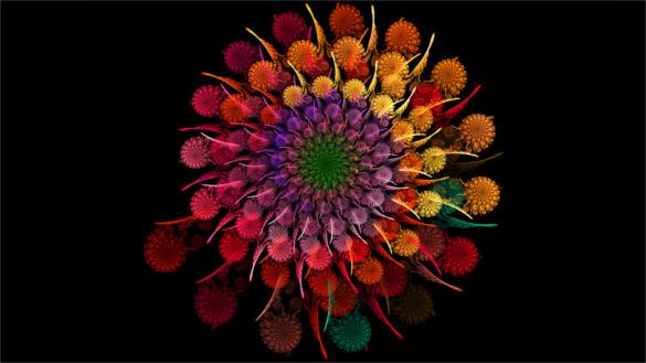 rainbow flower spiral fractal background for desktop