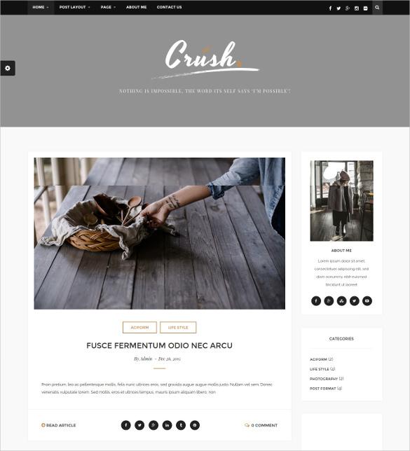crush a responsive wordpress blog theme