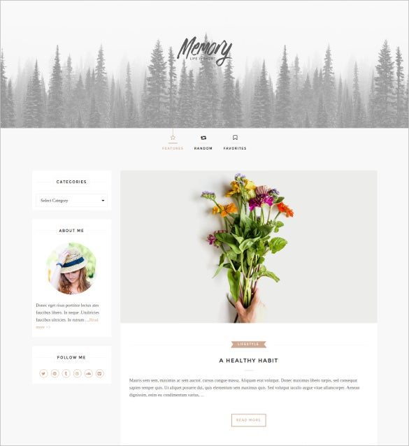 mobile friendly wordpress blog theme