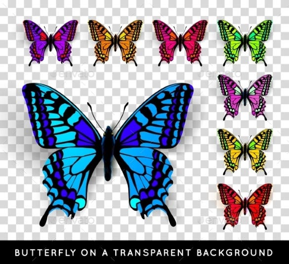 butterfly on transparent background eps download