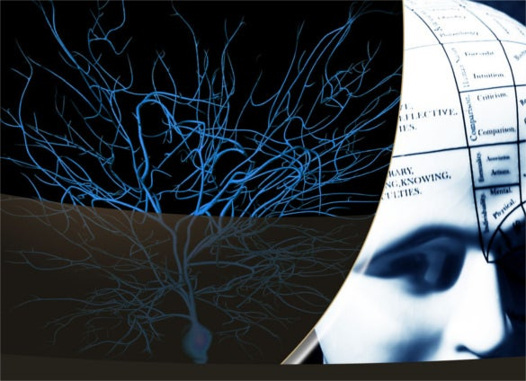 plantilla powerpoint de neurología