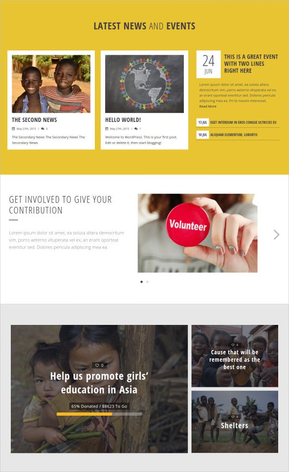 non profit ngo charity wesite wordpress theme