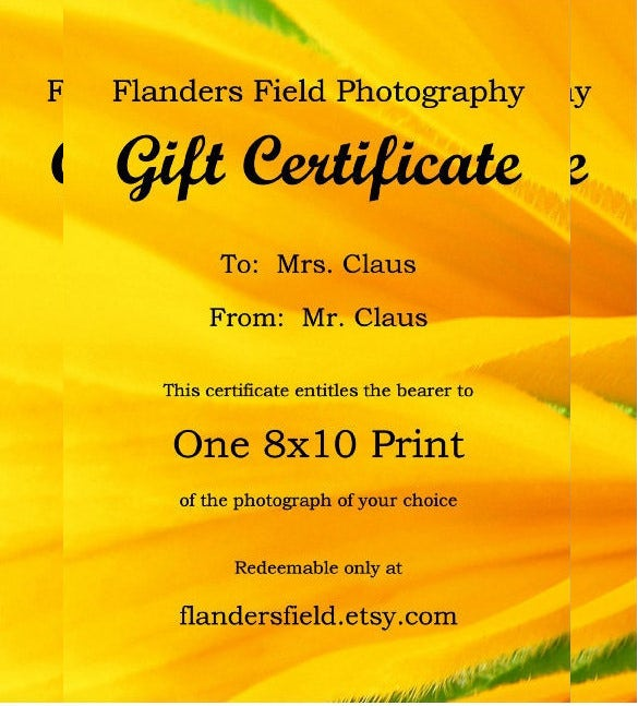 yellow colour email gift certificate example template download
