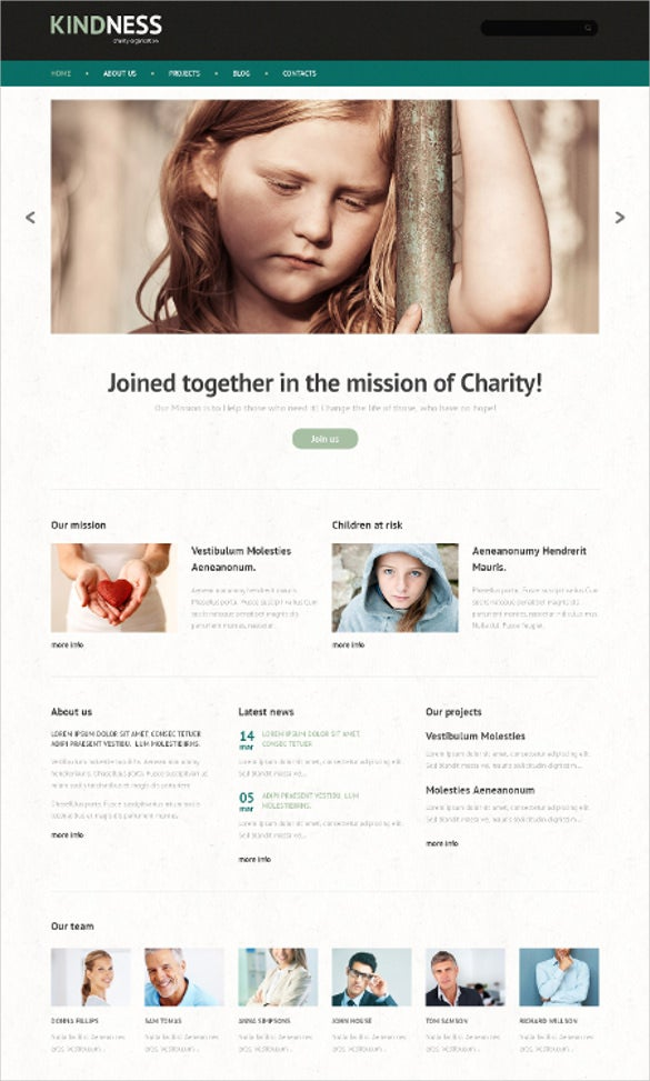 unity charity wordpress theme