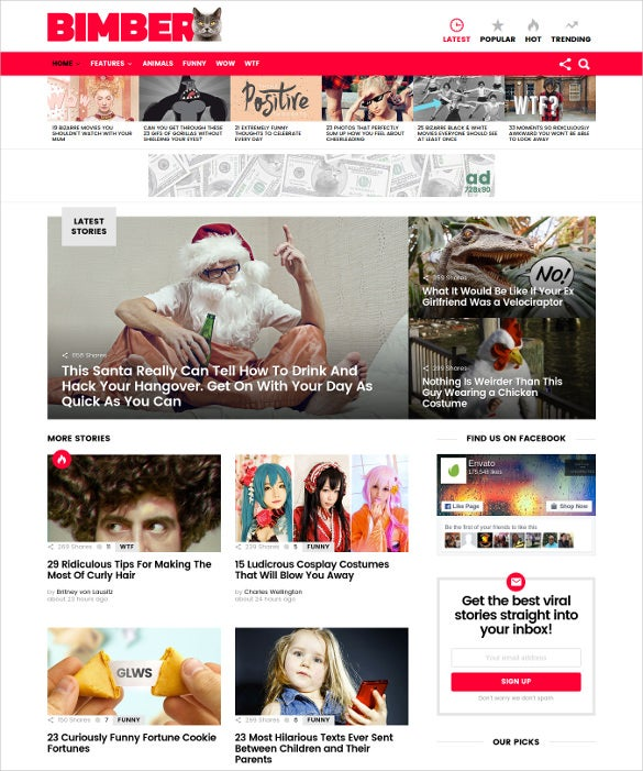 bimber viral buzz wordpress theme