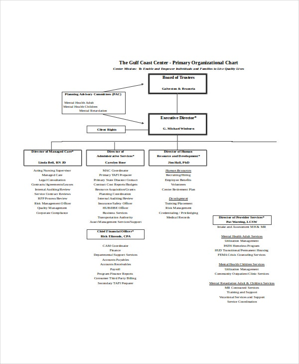 Primary Organizational Chart Template