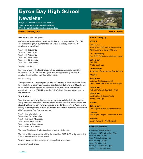 School Newsletter Templates  Free Sample Example Format