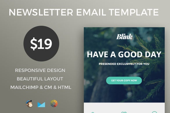 Html newsletter template 10 free psd pdf format download free responsive email newsletter template spiritdancerdesigns Image collections