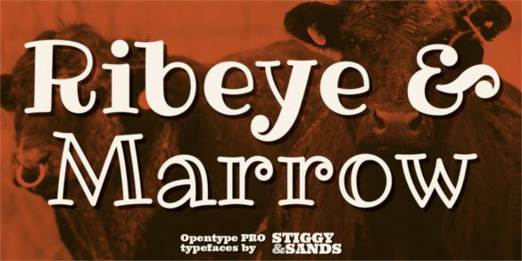 Ribeye Pro Font