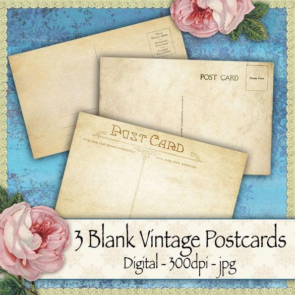 3 blank vintage blank postcards