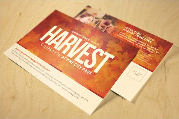 harvest celebration church postcard
