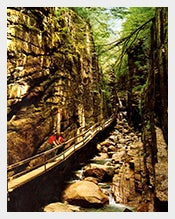 Unused-White-Mountains-Postcard-6-x-9-inch