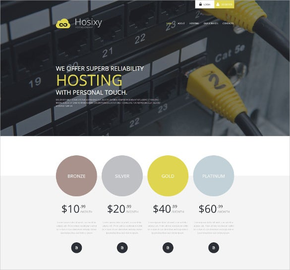 hosting company wordpress blog theme