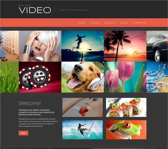 video hosting blog html 5 wordpress theme