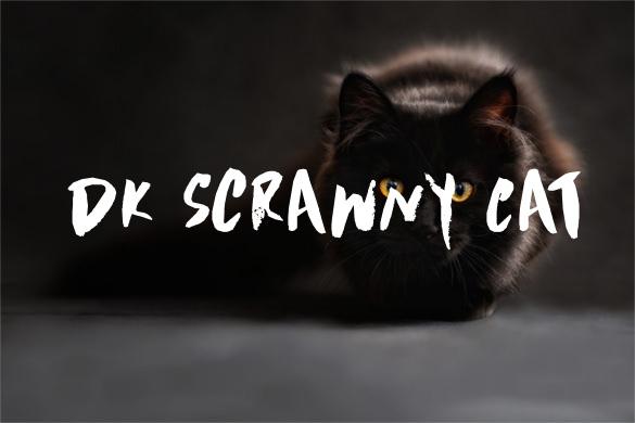 DK Scrawny Cat