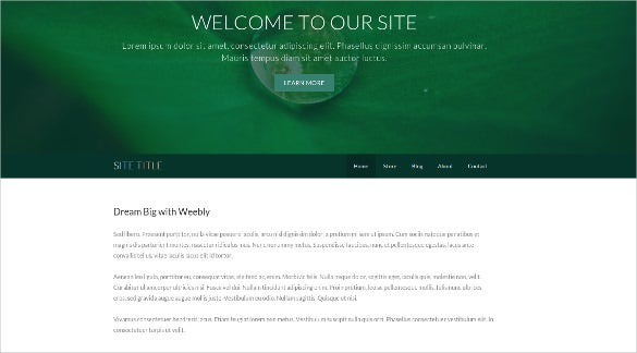 30 free weebly themes templates free premium templates for Weebly pro templates