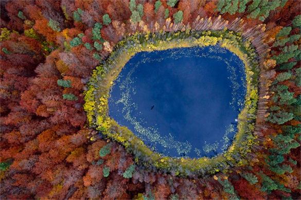 Pomerania - Porland