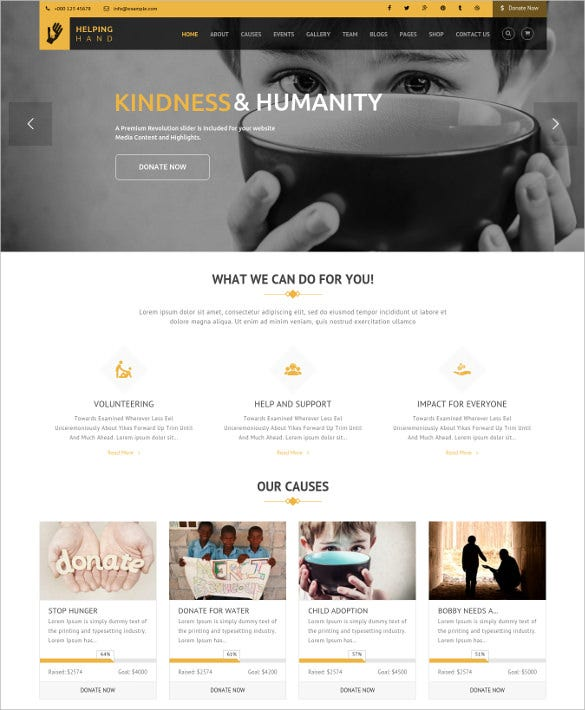 charity fundraising non profit wordpress theme