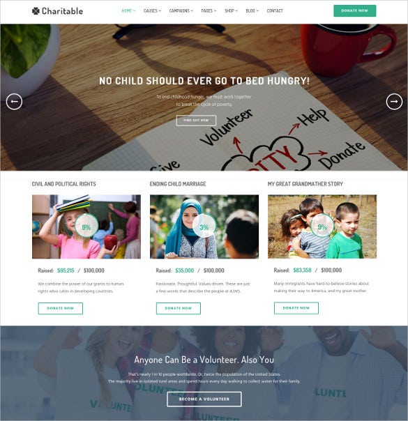 nonprofit organization wordpress theme