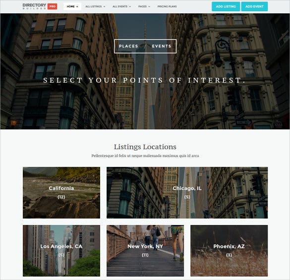 directory builder pro wordpress classified theme