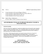 Official Numbered Memo Template Free PDF Download