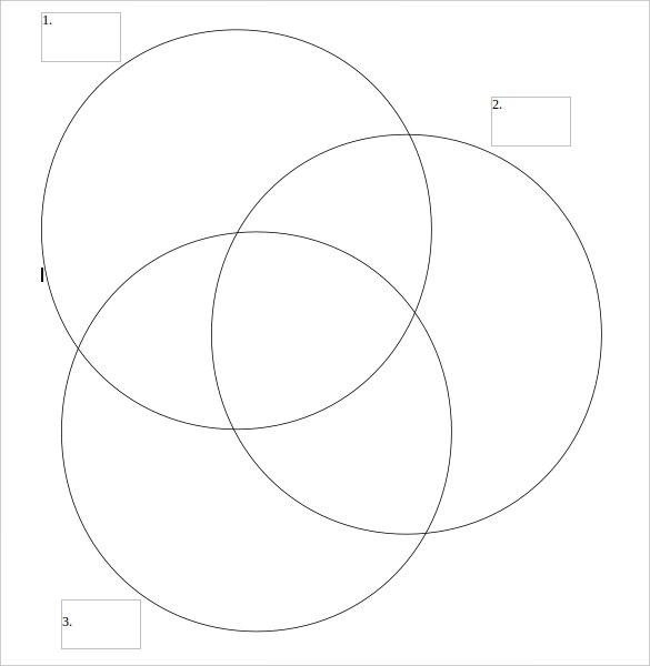 graphic venn diagram