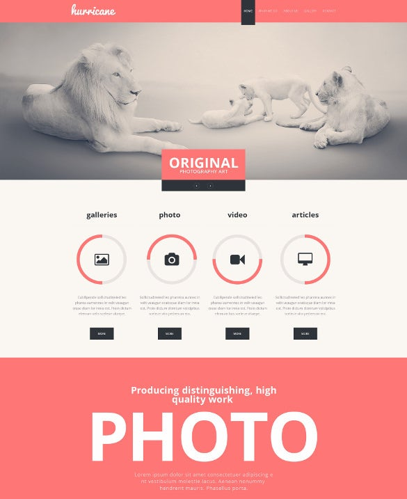 photographer portfolio mobile website html template