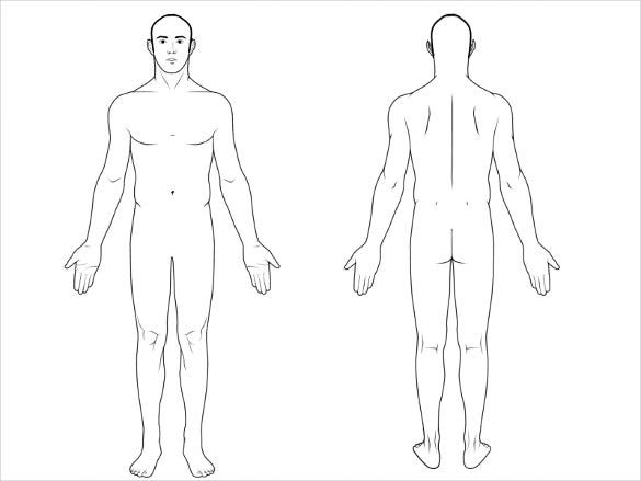 Blank Human Body Diagram Outline