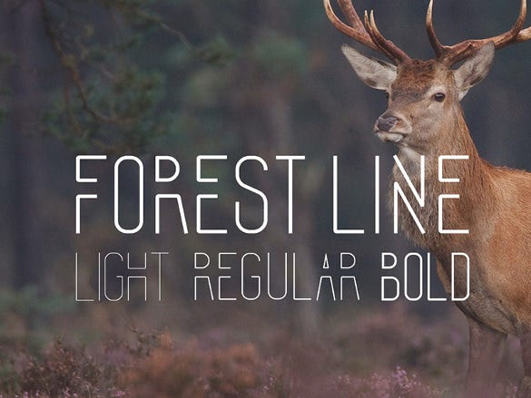 forest line condensed font