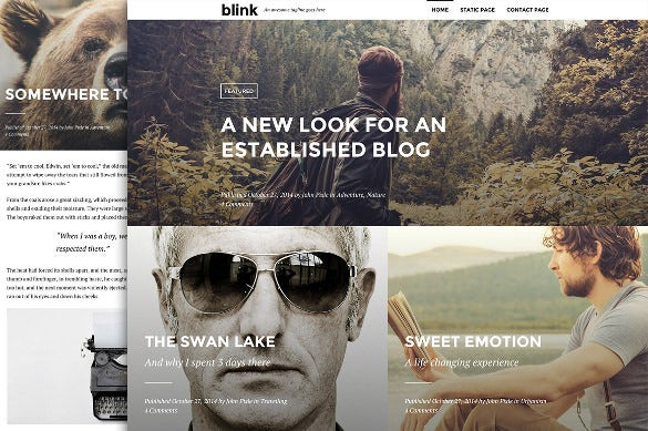 blink marketing wordpress blogging theme