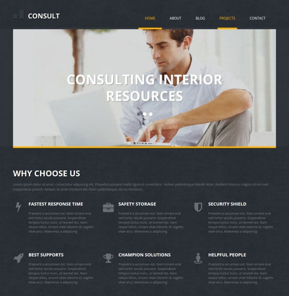 consult marketing business wordpress theme