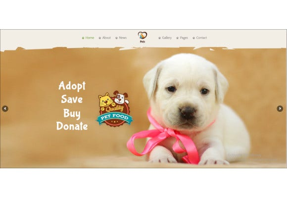 pet sitter and pet shop animal care wordpress theme