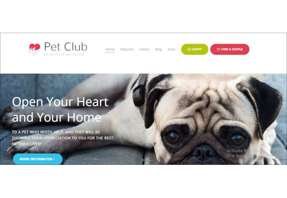 pets services adoption dating community wordpress theme