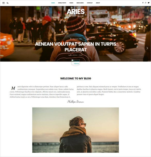 aries responsive blog wordpress theme