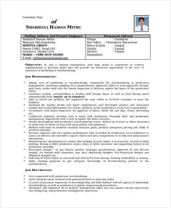 visual merchandiser cv template dayjob