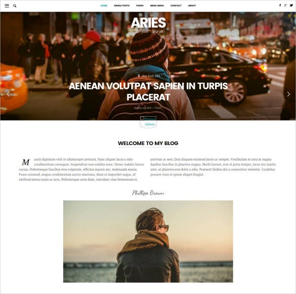 aries responsive blog wordpress theme1