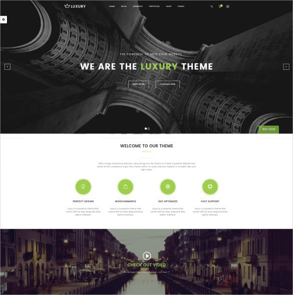 luxury responsive wordpress theme