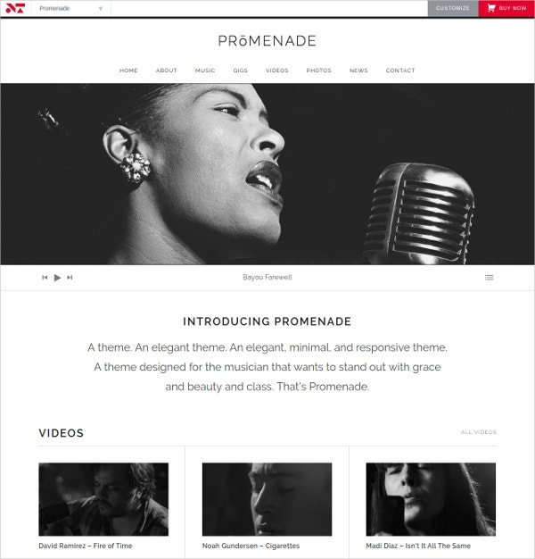 Elegant Music Band Website Theme