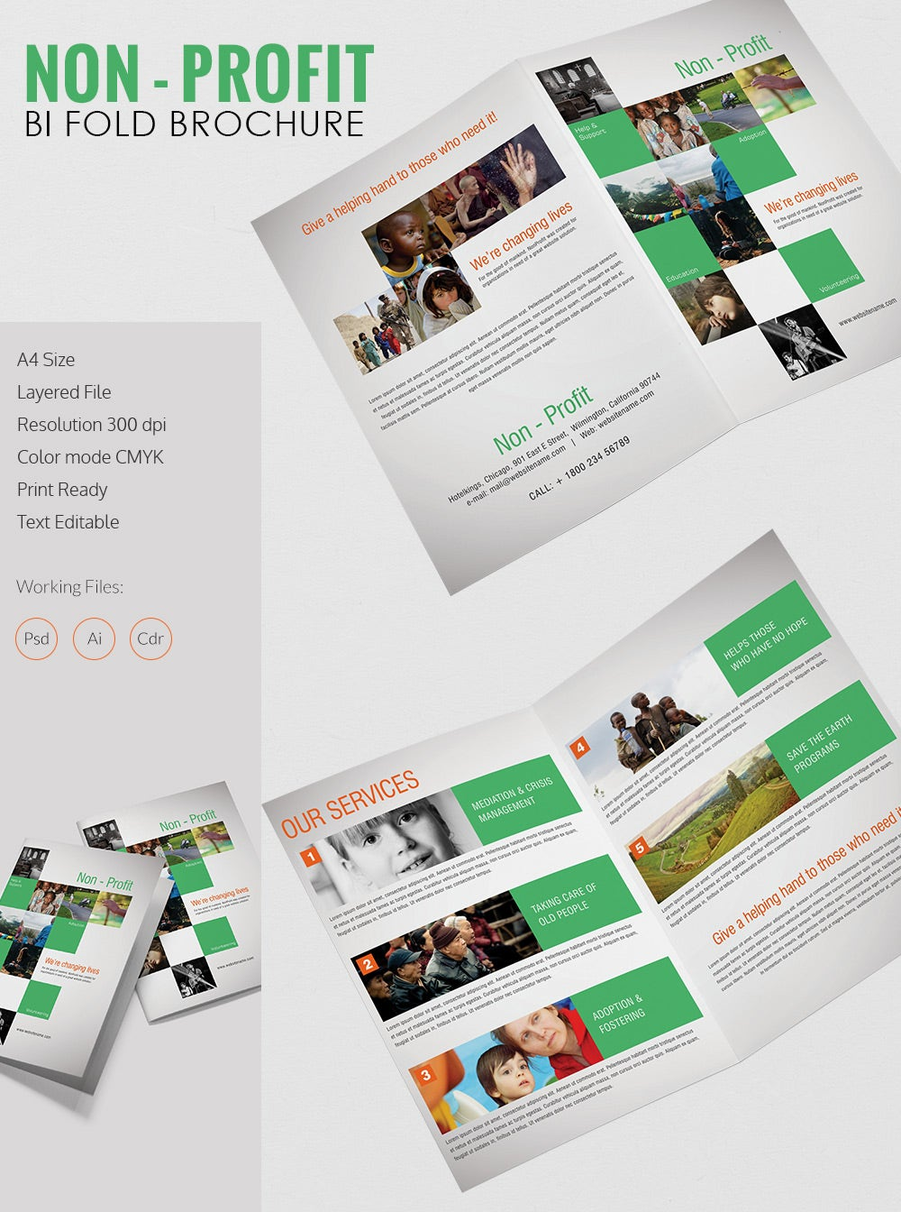 Beautiful Non Profit A4 Bi Fold Brochure Template Free Premium