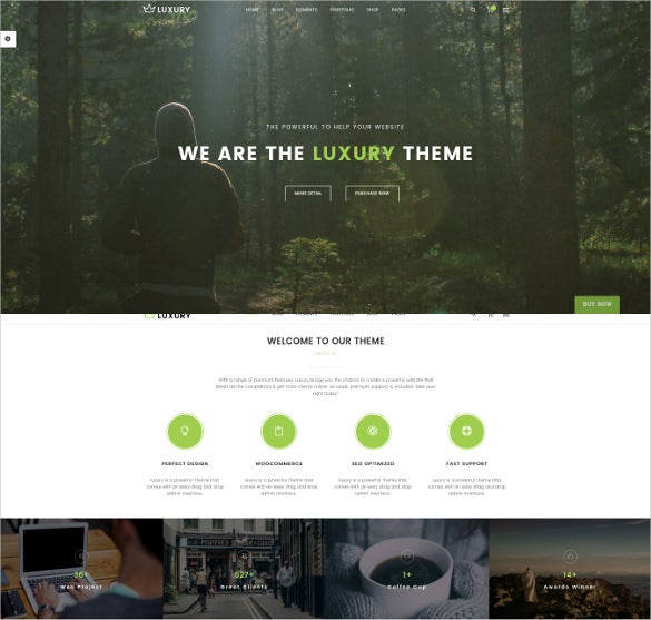 responsive wordpress one page website theme
