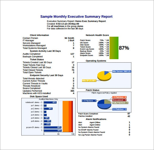 monthly executive summary report pdf free download
