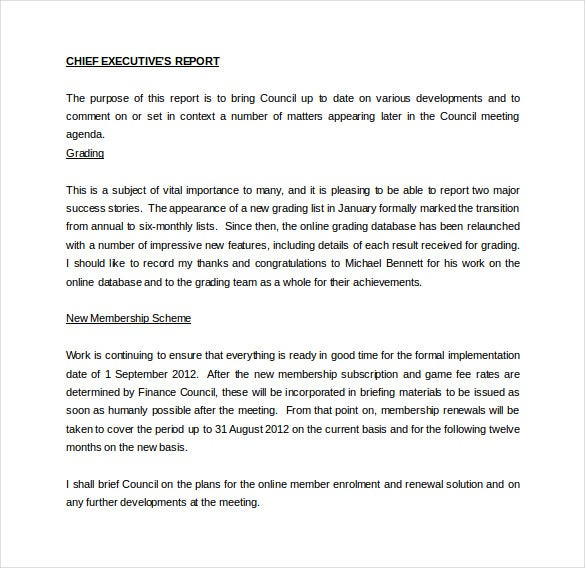 chief executive officer report word template free download