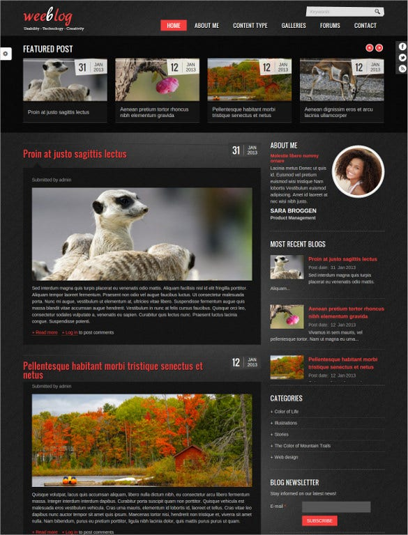 personal drupal blog template