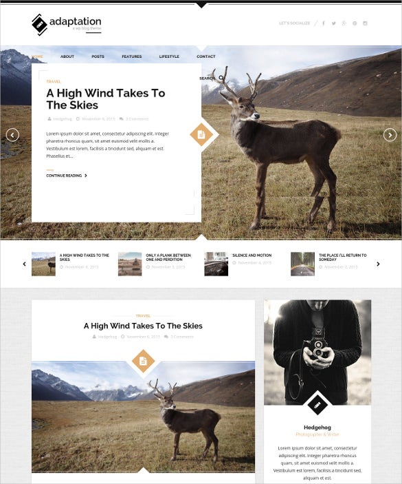 adaptation a responsive blog theme for wordpress