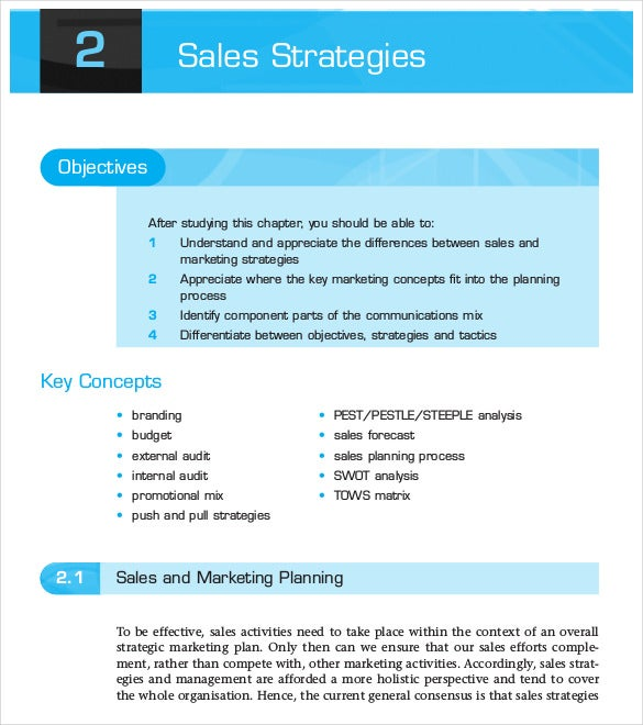 Sales Strategies Planning Process Sample PDF Template